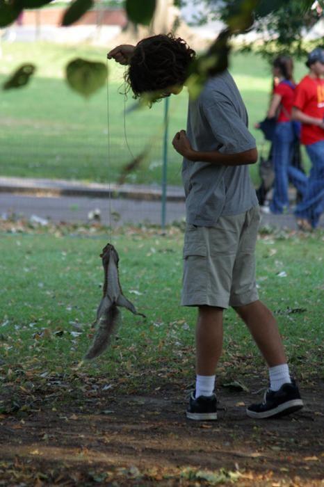 Рыбалка на белку