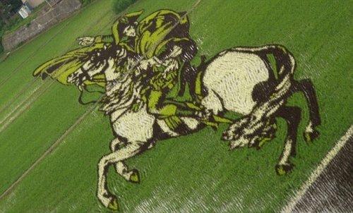 Рисунки на рисовом поле