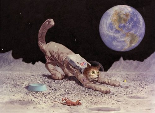 Картины Carl Lundgren